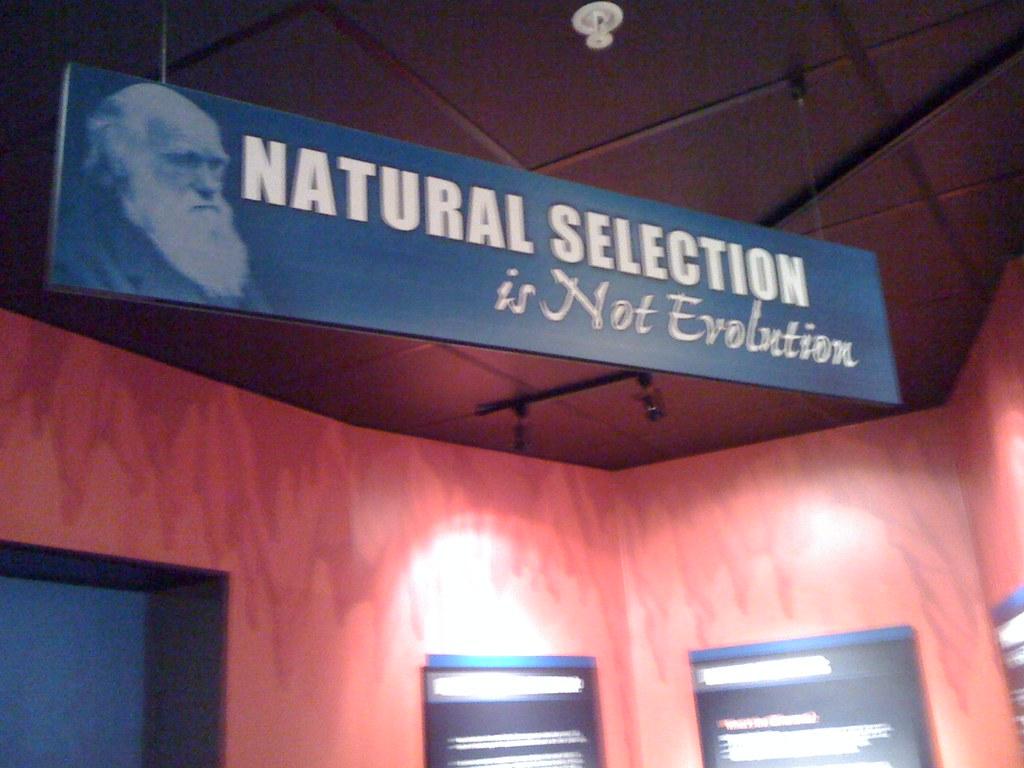 Darwin, Bernard.