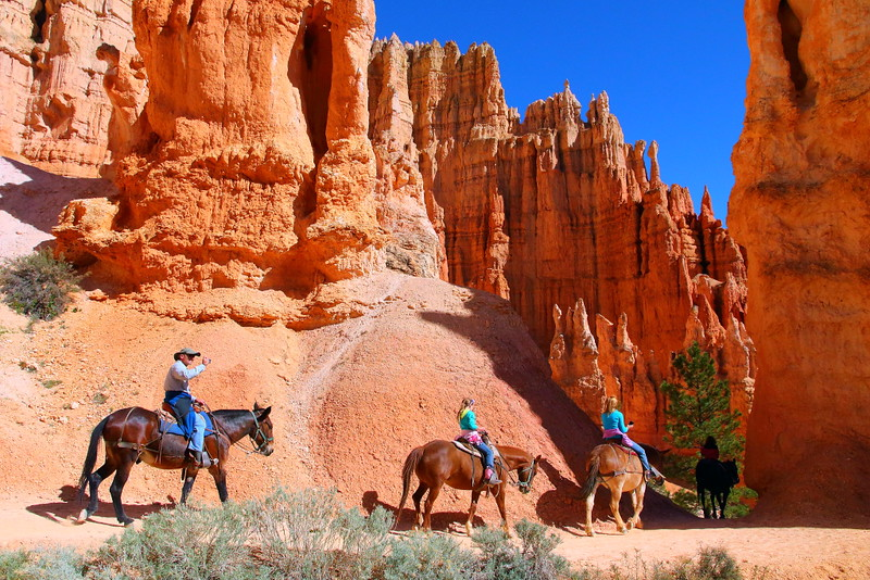 IMG_4736 Mule Ride on Peekaboo Trail, Bryce Canyon National Park