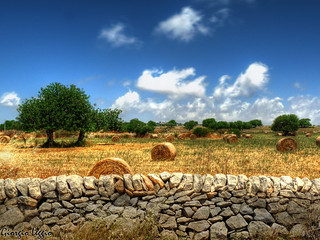 Sicilian Landscape | by Gio § Photostream