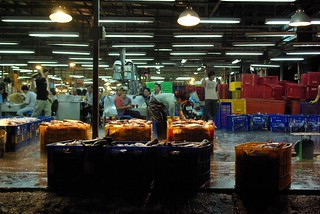 Going In - Chanh Hung Night Fish Market. Ho Chi Min City/Saigon | by The Hungry Cyclist