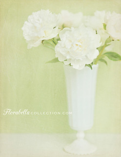 Peonies for Sarah... | by Shana Rae {Florabella Collection}