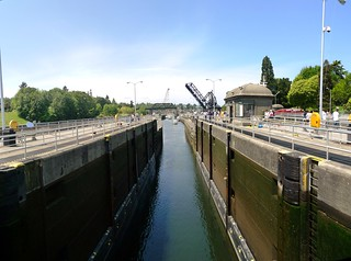 Ballard Locks (4) | by Tony in WA