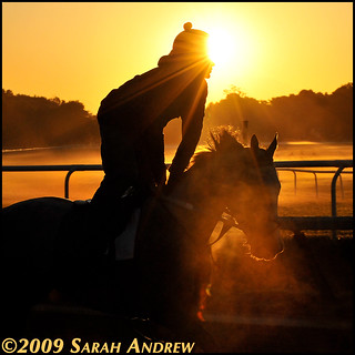 Here Comes the Sun | by Rock and Racehorses