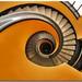 Orange vertigo