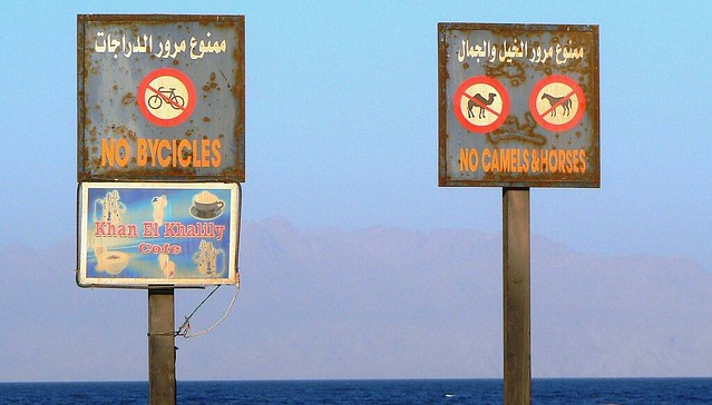 Funny Pictures About Egypt: Only In Egypt (Funny Signs - Dahab, Sinai, Egypt)