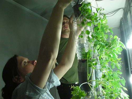 Britta and Ian Installing the Window Farm at Eyebeam | by britta and rebecca