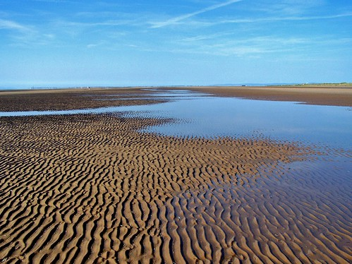 Ainsdale Sand Dunes National Nature Reserve in Southport, England - May 2009 | by SaffyH