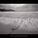[Motion Étude #3] Les vagues sur la plage