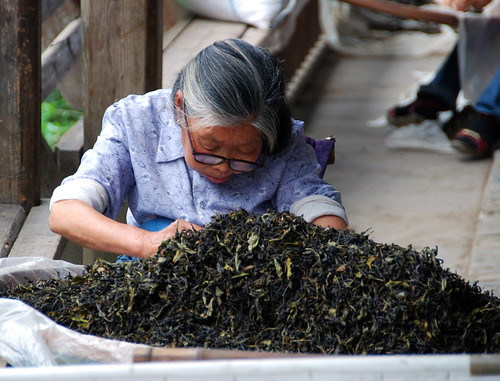 old lady sorting tea leaves, xiamei village | by hopemeng