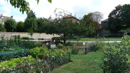 jardin catherine labour paris meg zimbeck flickr. Black Bedroom Furniture Sets. Home Design Ideas