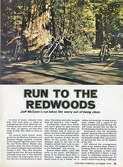 Run to the Redwoods | by mcwont