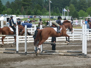 Lake Placid Horse Show | by Kathryn Cramer