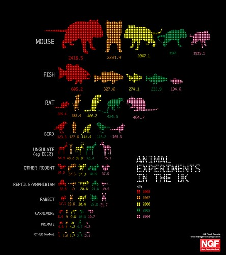 Infographic of animal experiments in the UK
