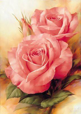 عکس گل رز صورتی