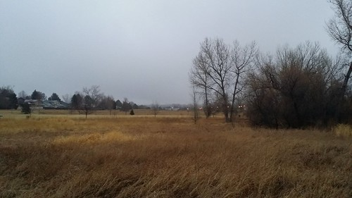 #tommw 34F light rain mixed with snow. Breezy. Overcast