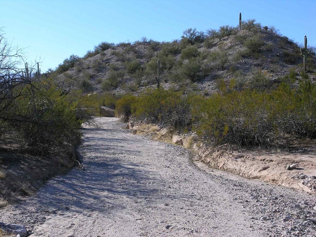 Left canyon of Peck Canyon; SE of San Manuel, AZ