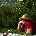 tea among the daisies