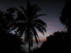 Koh Tao by night