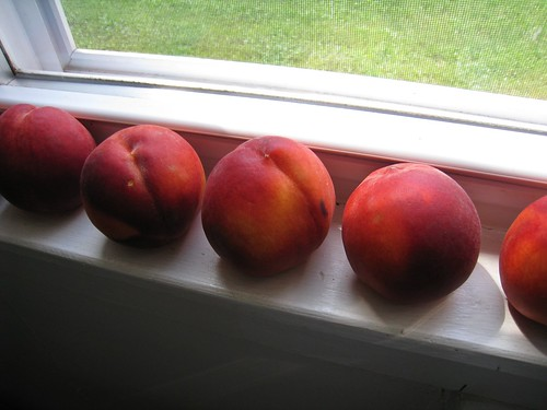 peaches ripening | by boodely
