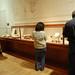 Visitors at the Darwin Exhibit