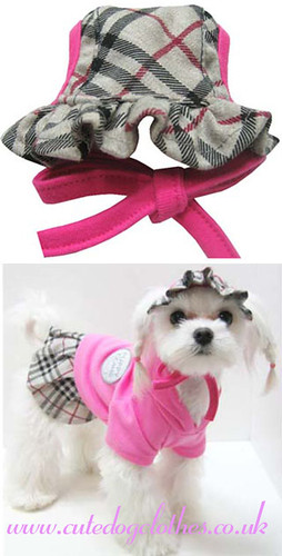 Pink Burberry Dog Hat Pink Burberry Dog Hat Grey In
