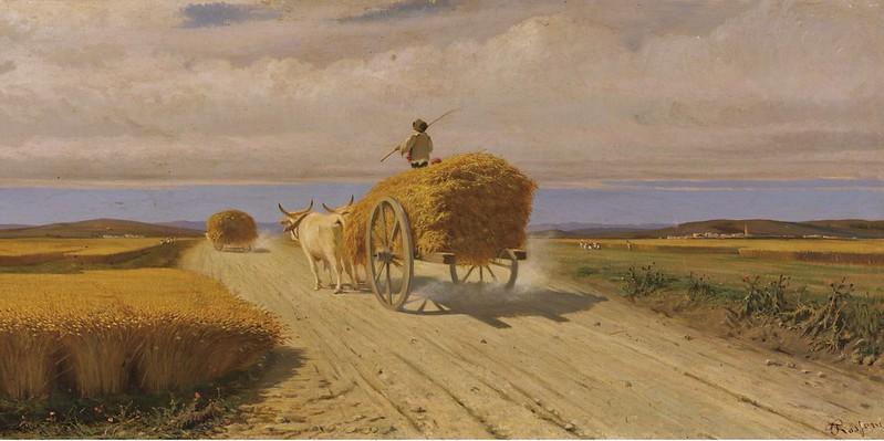 Federico Rossano - Campo di grano