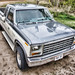 1980 Ford