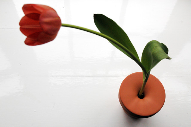 Bud Vase With Single Tulip Top View Single Flower Vase Flickr