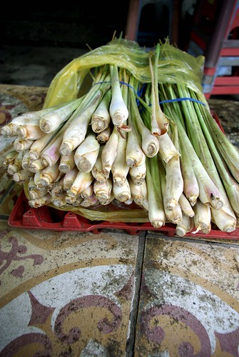 Xa (Lemongrass) - Cycling In Saigon | by The Hungry Cyclist