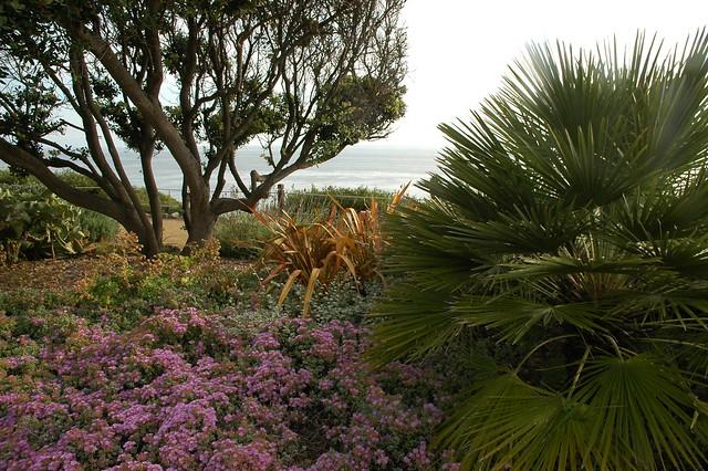 Dsc 3395 Self Realization Fellowship Meditation Garden Encinitas California Usa Flickr