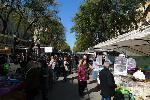 Market Day - Nova Rambla - Tarragona, Catalunya, Spain