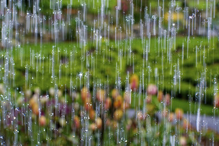 Water veil | by Nick Harris1