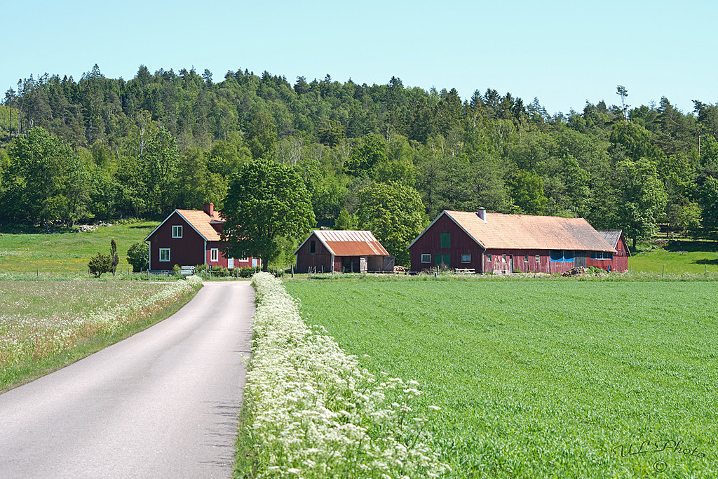 Countryside - Southwest of Sweden | atranswe | Flickr