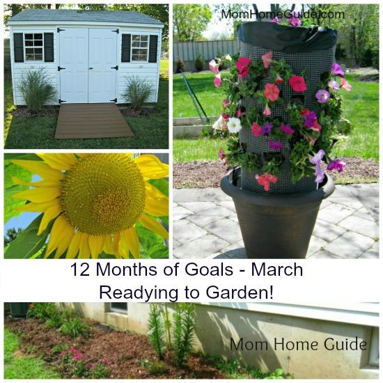 12-months-goals-march