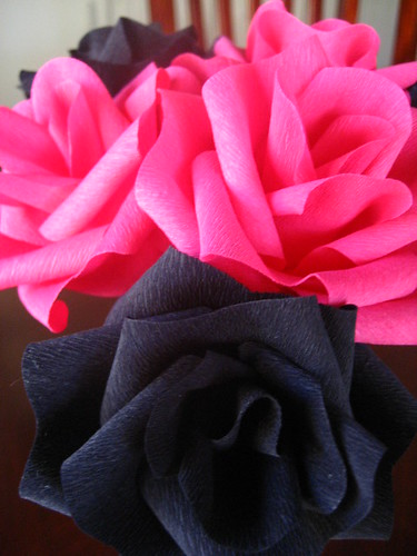 Pink and black roses