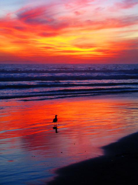 California Huntington Beach Rehab Pricing