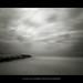 [Motion Étude #2] La mer