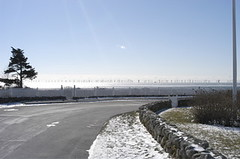 Wind Farm Simulation | by WNPR - Connecticut Public Radio