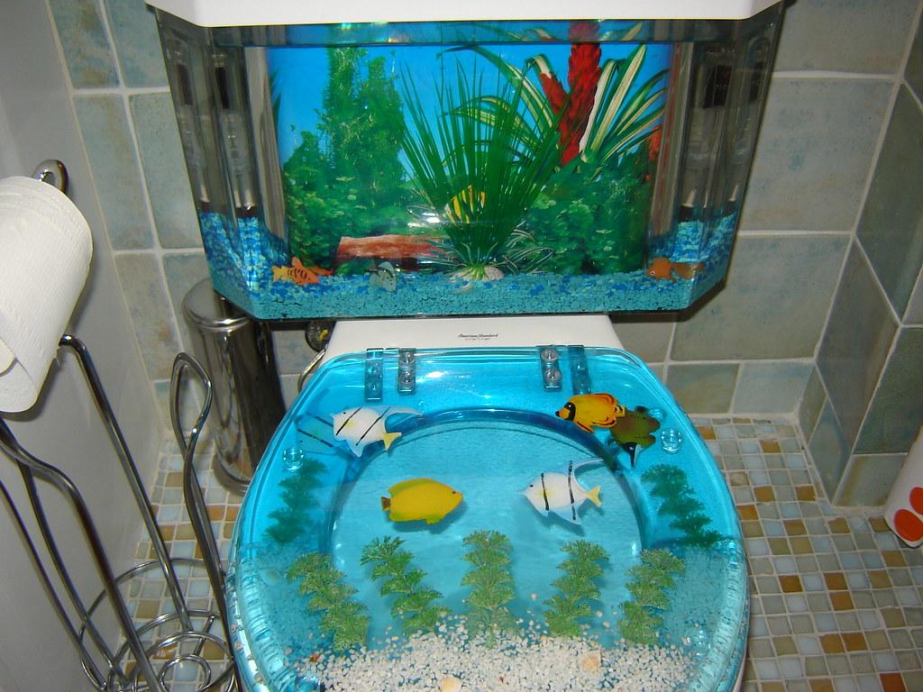 Fish tank toilet -  Ashlees Fish Tank Toilet By Shawnherr