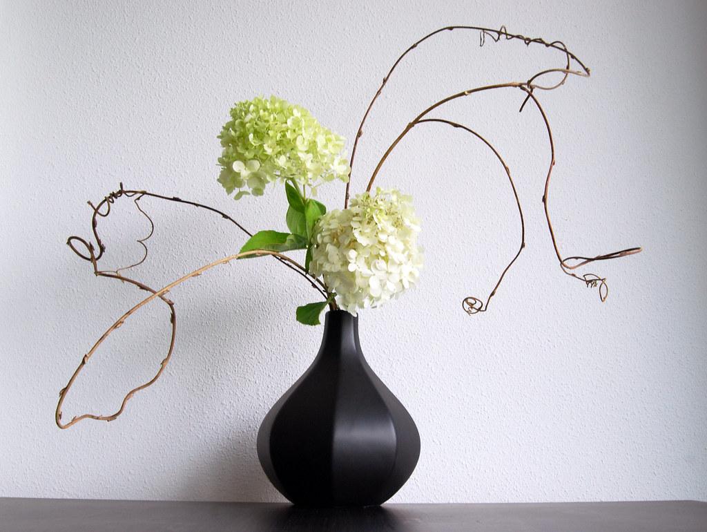 ikebana flower arrangement with hydrangea otomodachi flickr. Black Bedroom Furniture Sets. Home Design Ideas
