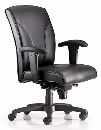 Classic Leather Ergonomic Chair Ergonomic Chairs From