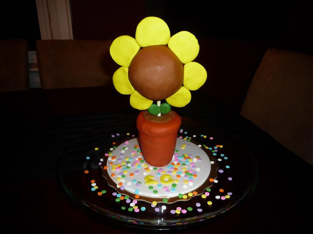 Chocolate Shaped Cake Decorating