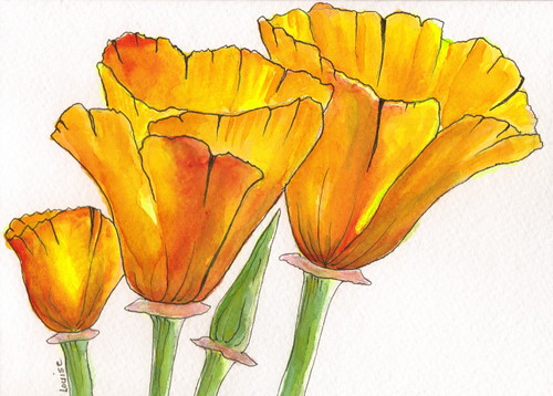 California Poppy Card I Painted This Little Card For My
