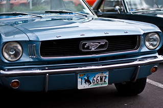 Mustang | by Kyle Carter