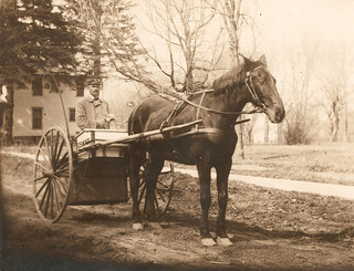 Photograph of letter carrier with horse and wagon | by Smithsonian Institution