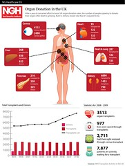 Organ Donation | by GDS Infographics