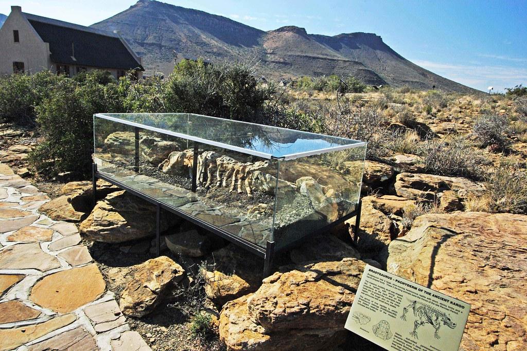 Karoo National Park Fossil Trail - Central Karoo, South Af