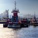 Chemical Coast Moran Tugs, Kill Van Kull