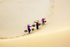 Sandlife | by -clicking-