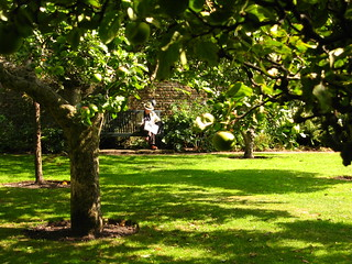 Summer in the Apple Orchard Garden at Fenton House, Hampstead | by Laura Nolte